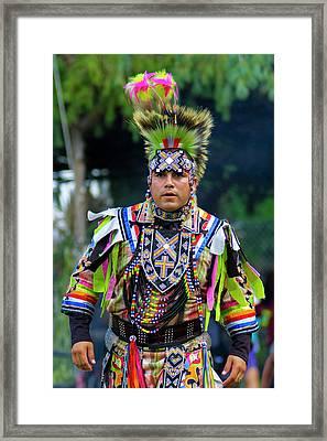 Regalia Framed Print