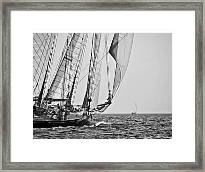 Regatta Heroes In A Calm Mediterranean Sea In Black And White Framed Print