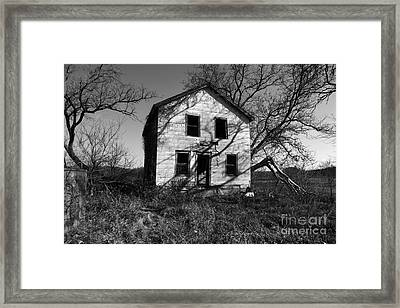 Regeneration Framed Print by Amanda Barcon