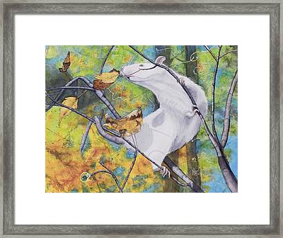 Tree Tango Framed Print