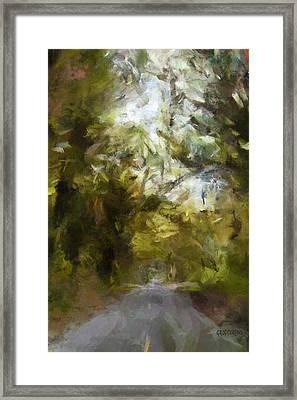 Regnskog Framed Print