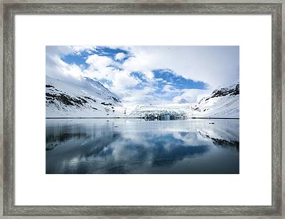Reid Glacier Glacier Bay National Park Framed Print