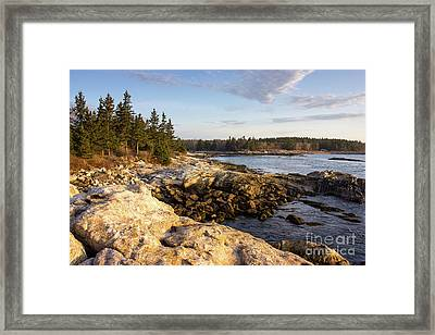 Reid State Park #2 Framed Print by Benjamin Williamson