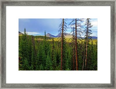 Reids Peak Framed Print by Chad Dutson
