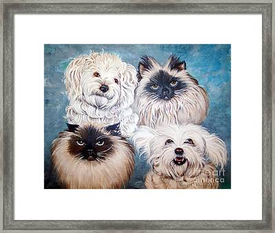 Reigning Cats N Dogs Framed Print