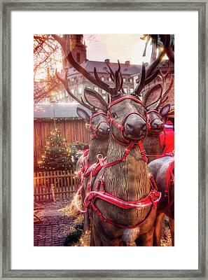 Reindeer At Copenhagen Christmas Market Framed Print