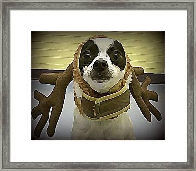 Reindeer Dog Framed Print