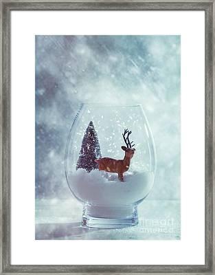 Reindeer In Glass Snow Globe  Framed Print by Amanda Elwell