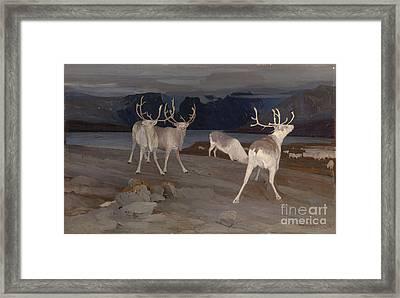Reindeer Keeping Watch Framed Print by MotionAge Designs