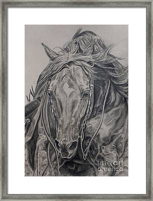 Reiner Framed Print by Jana Goode