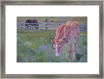 Rein's Playground Framed Print by Anne West