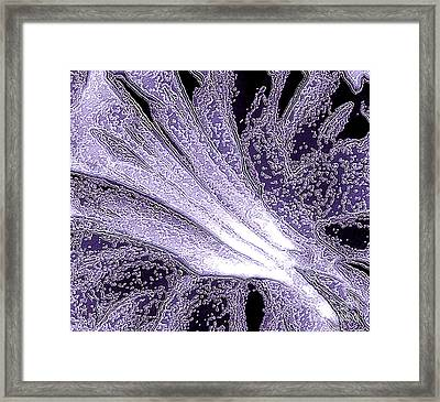 Rejuvenation Framed Print by Addie Hocynec