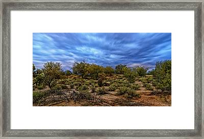Framed Print featuring the photograph Rejuvenation Op19 by Mark Myhaver