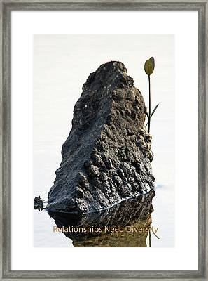 Relationships Need Diversity Framed Print