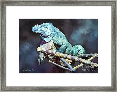 Framed Print featuring the photograph Relaxation by Jutta Maria Pusl