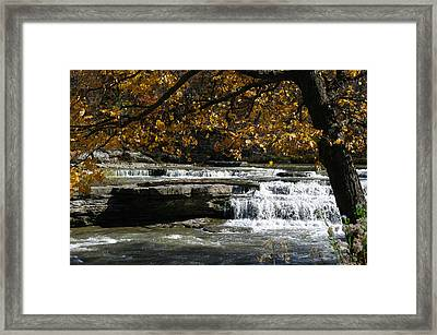 Relaxation Framed Print by Melissa  Riggs