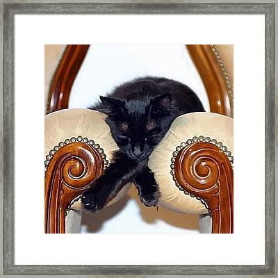 Relaxed Black Cat Sleeping Between Two Chairs Framed Print by Tracey Harrington-Simpson