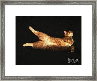 Relaxed Framed Print by Patricia Hofmeester