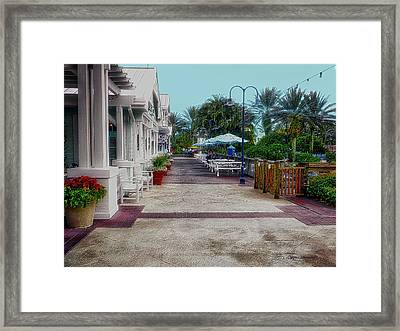Relaxing On The Patio Walt Disney World Pa Framed Print