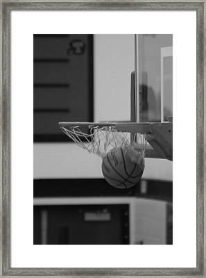 Framed Print featuring the photograph Release From The Net by Laddie Halupa