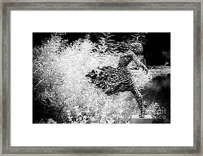 Releasing Framed Print by Tim Gainey