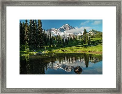 Relected Image Framed Print