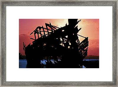 Relic Framed Print by Mike Flynn