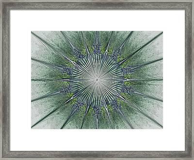 Relief Julian Star Framed Print