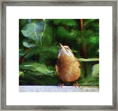 Remain Hopeful - Carolina Wren Framed Print by Kerri Farley