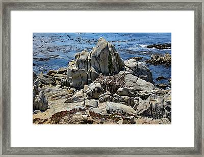 Framed Print featuring the photograph Remains Of Ancient Rocks At Carmel Point by Susan Wiedmann