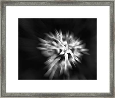 Framed Print featuring the photograph Remember Me by Ann Powell