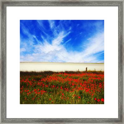 Remember Summer Framed Print
