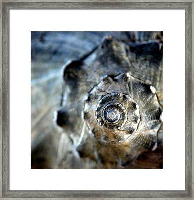 Remember The Sea With Me Framed Print