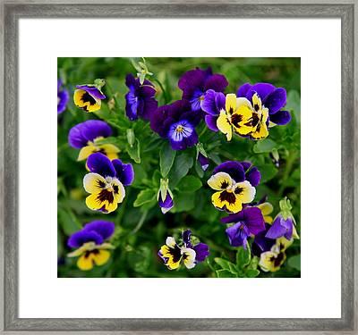 Remembering Grandma Framed Print by Karen Wiles