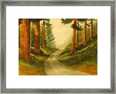 Remembering Redwoods Framed Print by Marilyn Jacobson