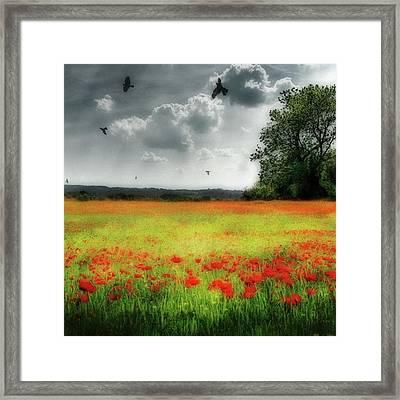 Remember #rememberanceday #remember Framed Print