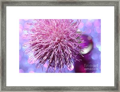 Reminicing Of Summer Framed Print by Krissy Katsimbras