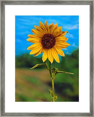 Reminiscing Glorious Summer Days Framed Print by Rick Primeau