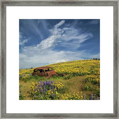 Reminiscing In The Wild Flowers Framed Print
