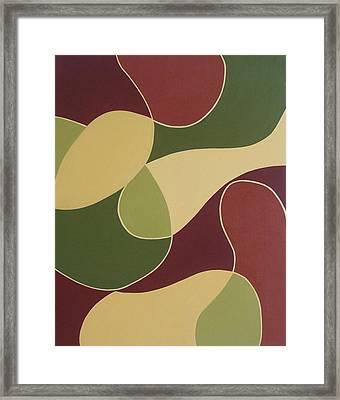 Remnants Of A Fruit Basket Framed Print by Sandy Bostelman
