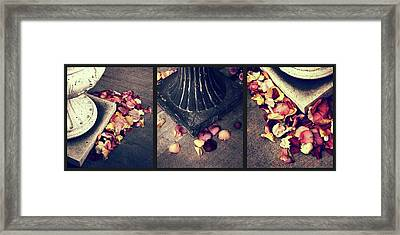 Remnants Of Roses Triptych Framed Print by Jessica Jenney