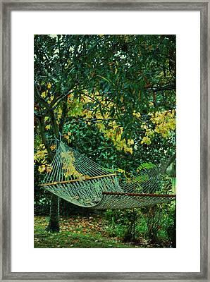 Remnants Of Summer Framed Print by Trudi Southerland