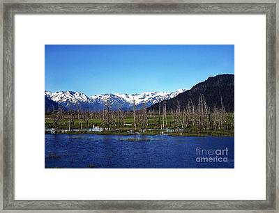 Remnants  Framed Print by Thomas R Fletcher