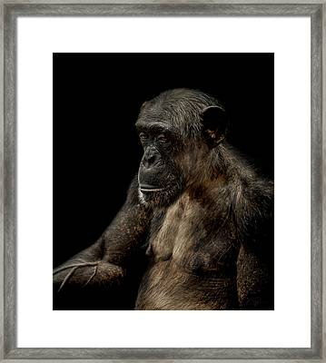 Remorse Framed Print by Paul Neville