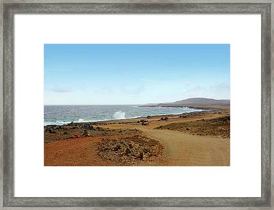 Remote Beach And Waves Off Coast Of Aruba Framed Print by Design Turnpike