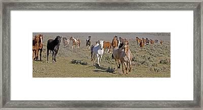 Remuda Framed Print by Judy Deist