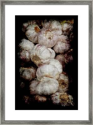 Renaissance Garlic Framed Print
