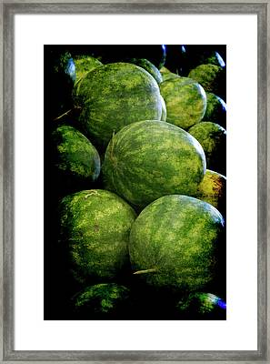 Renaissance Green Watermelon Framed Print