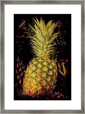 Renaissance Pineapple Framed Print