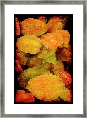 Renaissance Star Fruit Framed Print